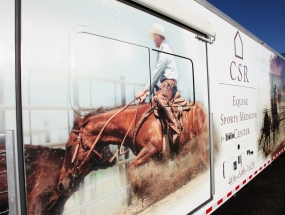 Lettering and Wrap design - Copper Spring Ranch