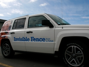InvisibleFence 6.jpg