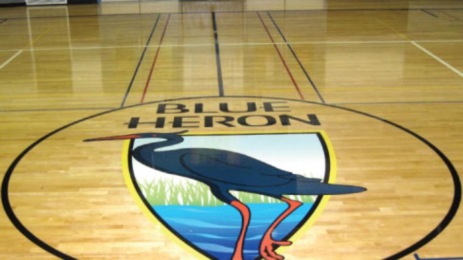 BLUE-HERON-SCHOOL_GYM-FLOOR-DECAL