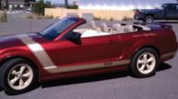 Ford-Mustang-Face-Lift-Pinstriping