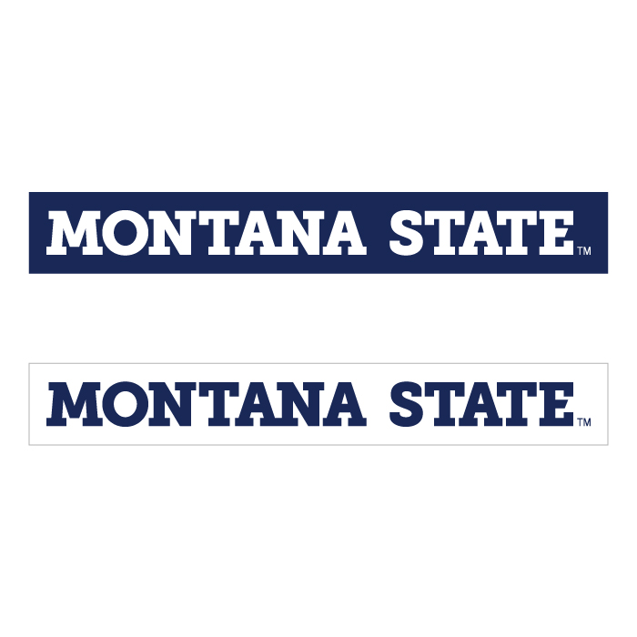 Montana State Bumper Sticker 2 For 1 183 Let S Wrap